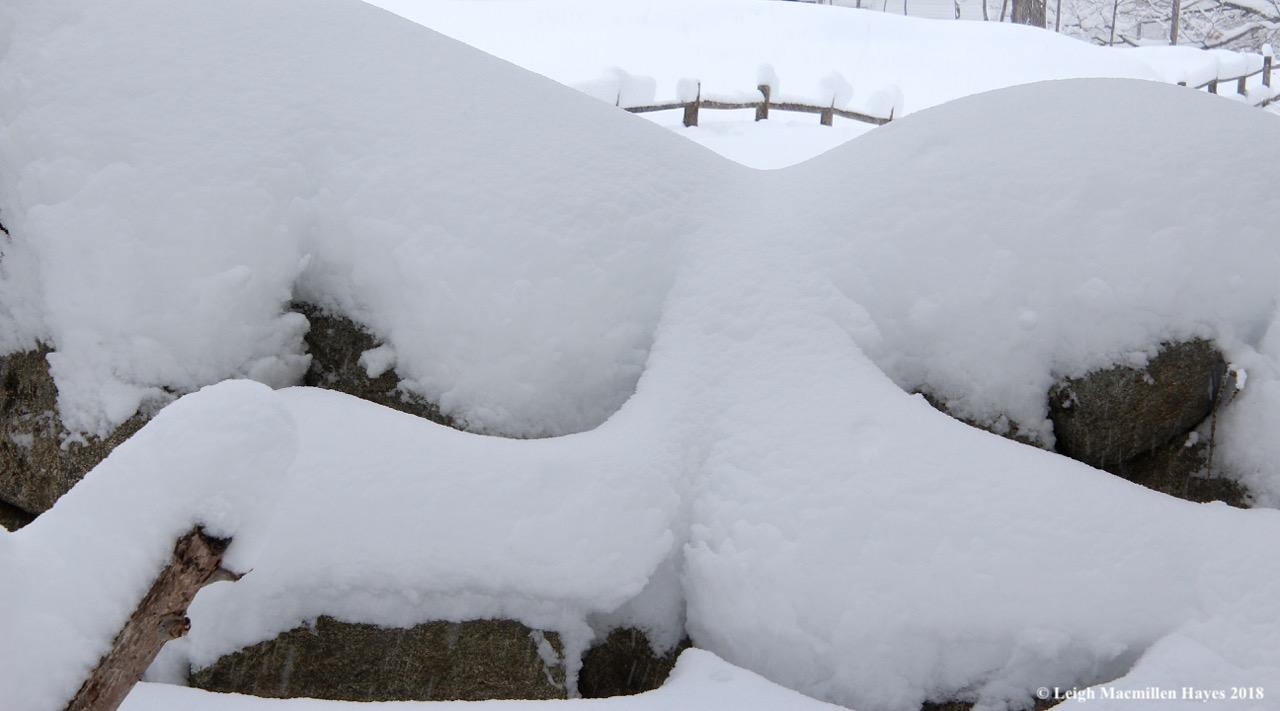 p-snow on fences