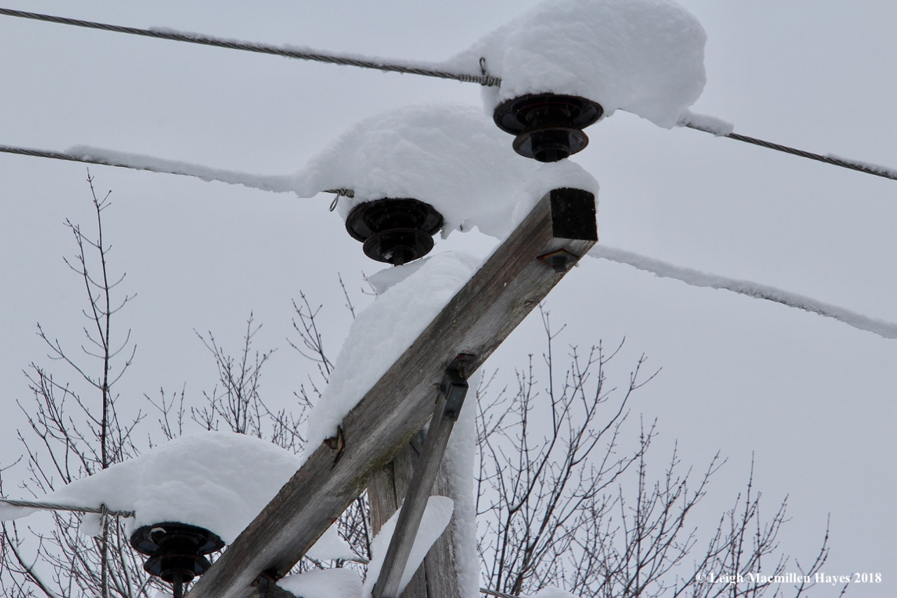 p-snow on insulators