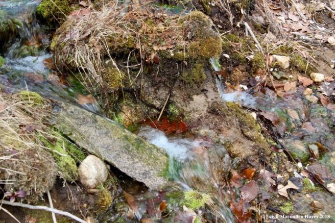 p21-water flowed