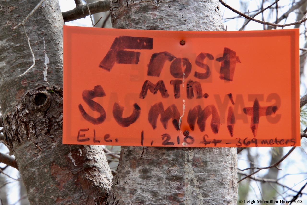 p29-summit at lasst