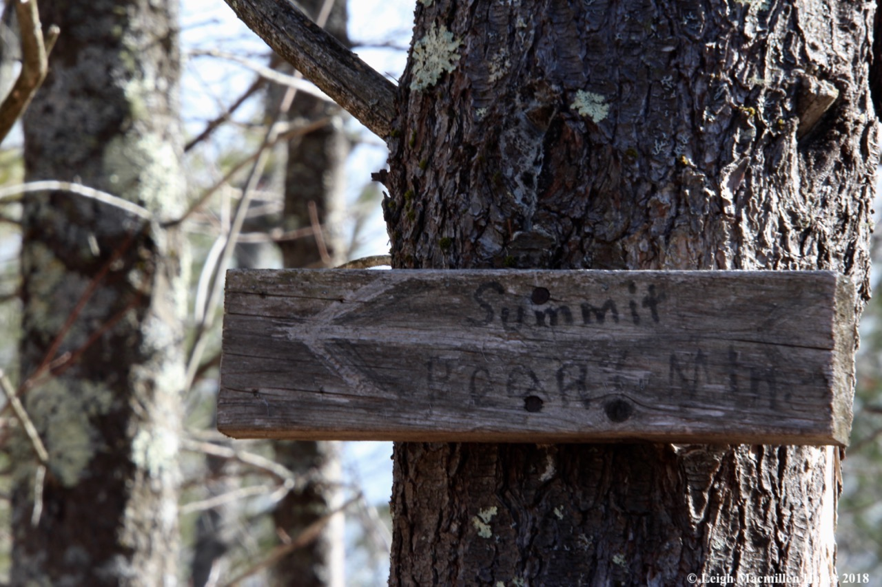 p9-trail sign