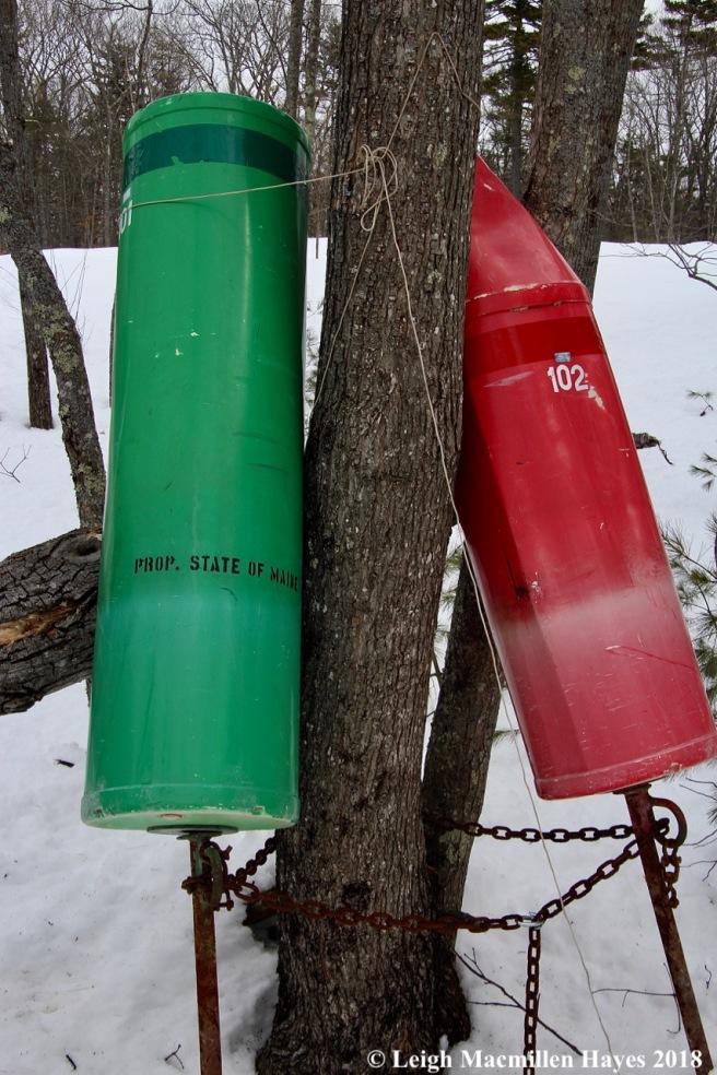 s14-buoys