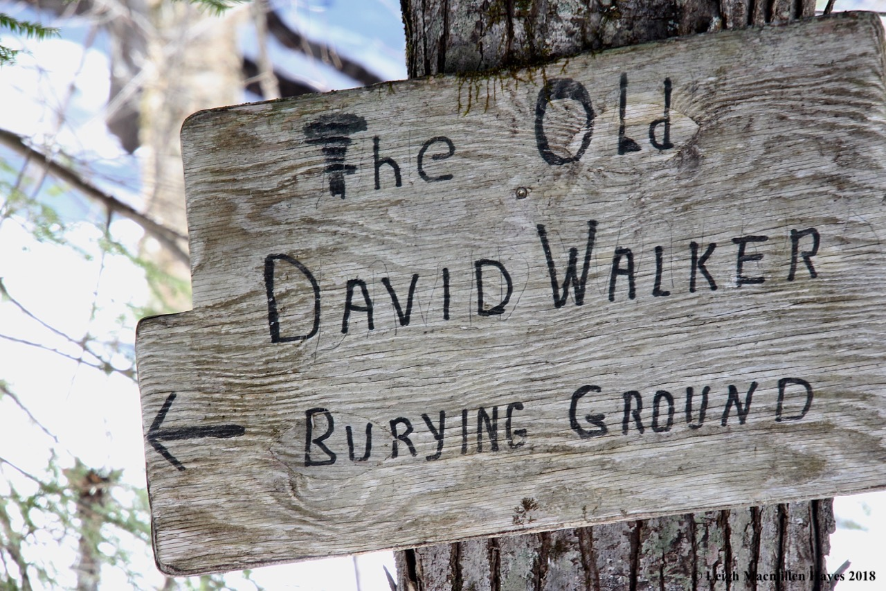 s14-Old David Walker Burying Ground