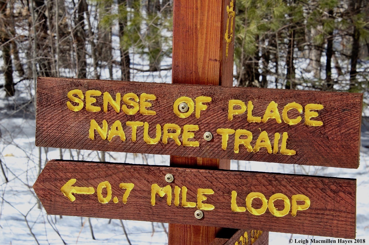 s19-nature trail sign