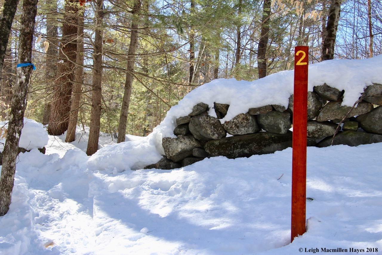 s22-stone wall