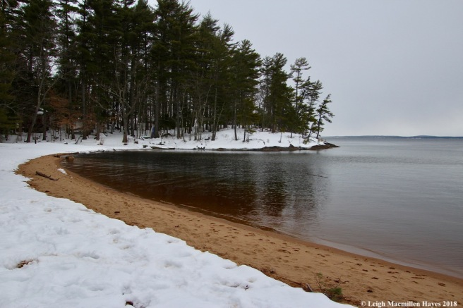 s5-beach on Sebago Lake