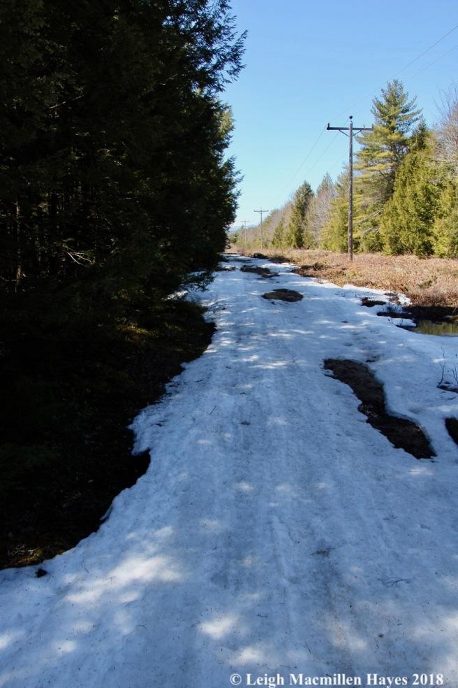 e11- snowmobile trail