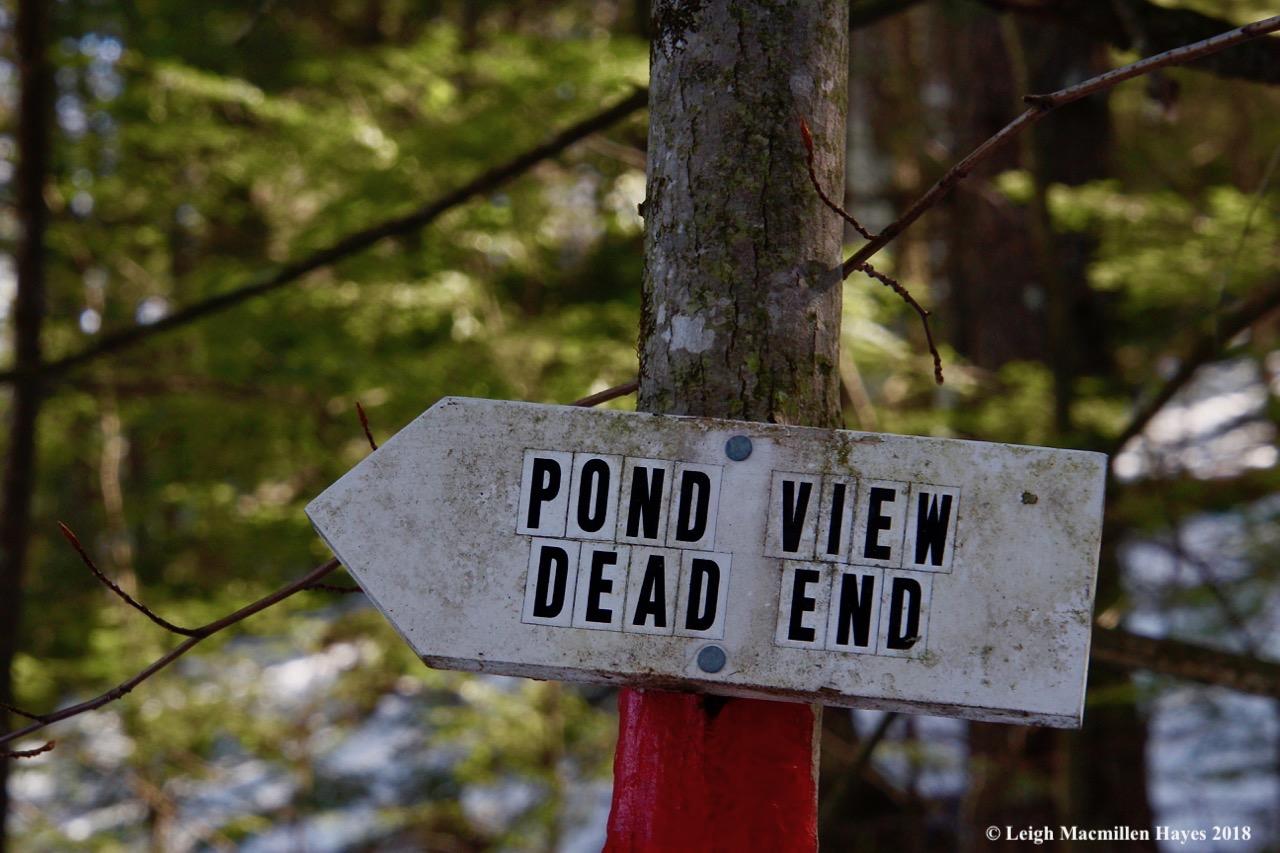 m13-dead end