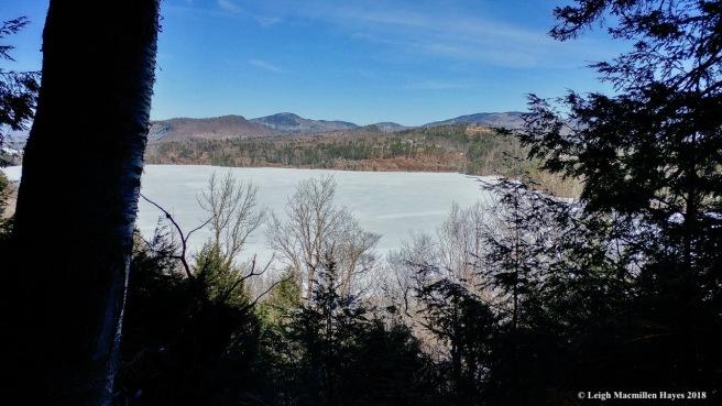 m14-pond view