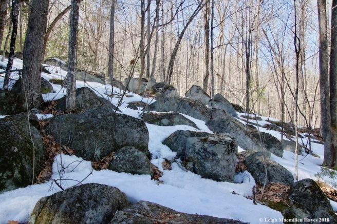 m15-boulder field