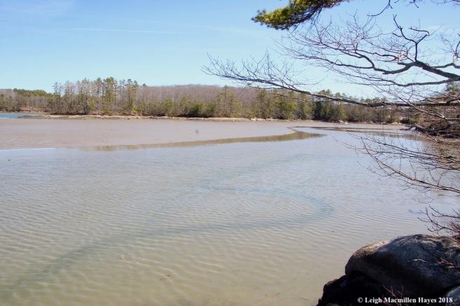 o13-Cross river