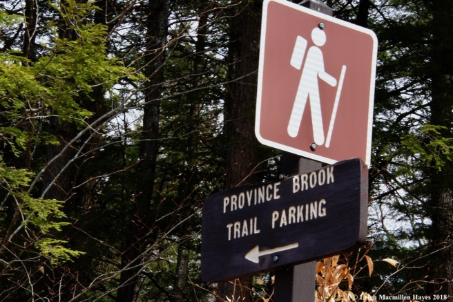 p1-trail sign