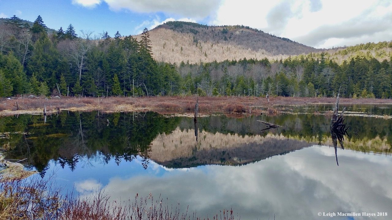 p12-Mount Shaw and Province Pond
