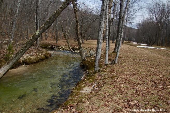 s11-Rattlesnake Brook