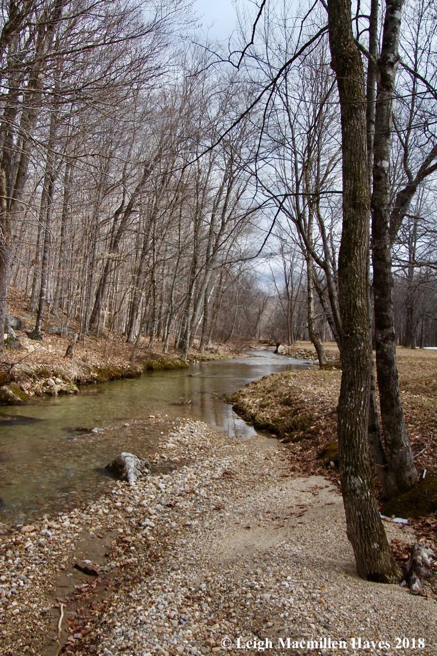 s12-rattlesnake brook