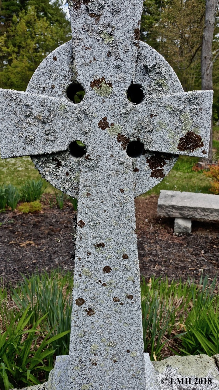 S11-CELTIC CROSS WITH LICHENS