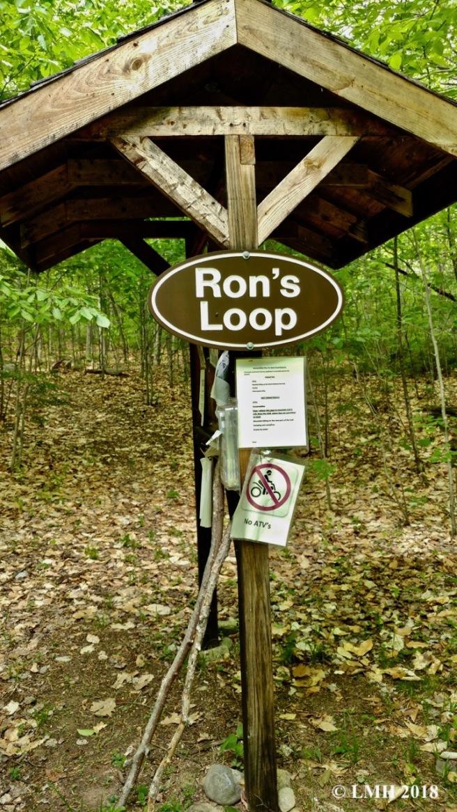 Y7-RON'S LOOP KIOSK