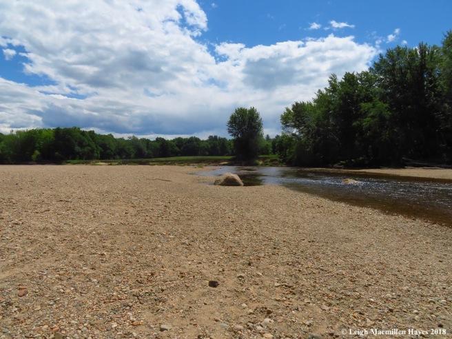 d4-Saco River