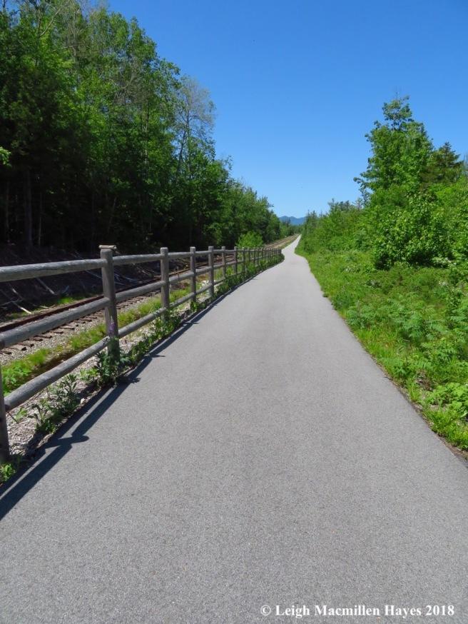m6-Mtn Division Trail