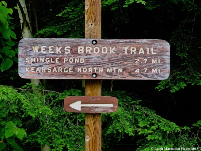 s1-trail sign