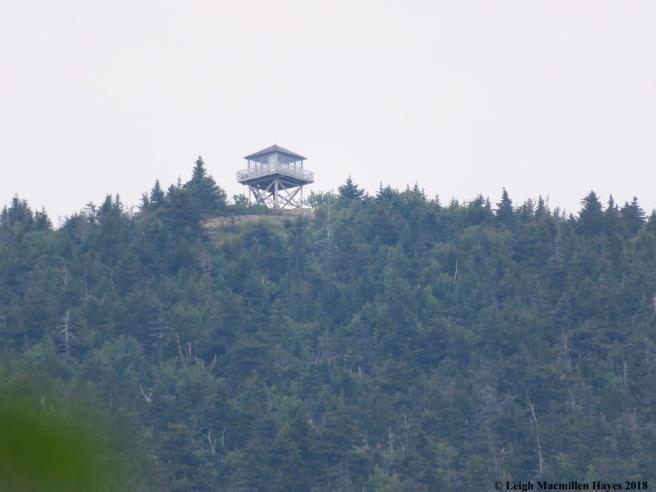 s15-Kearsarge Fire Tower