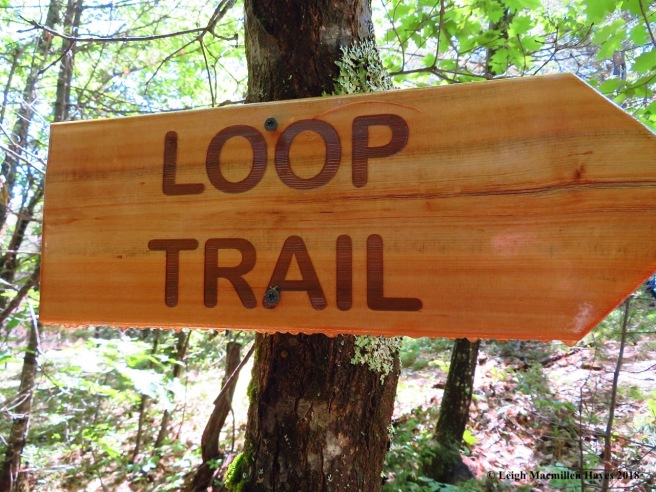 s15-loop trail sign at ridge