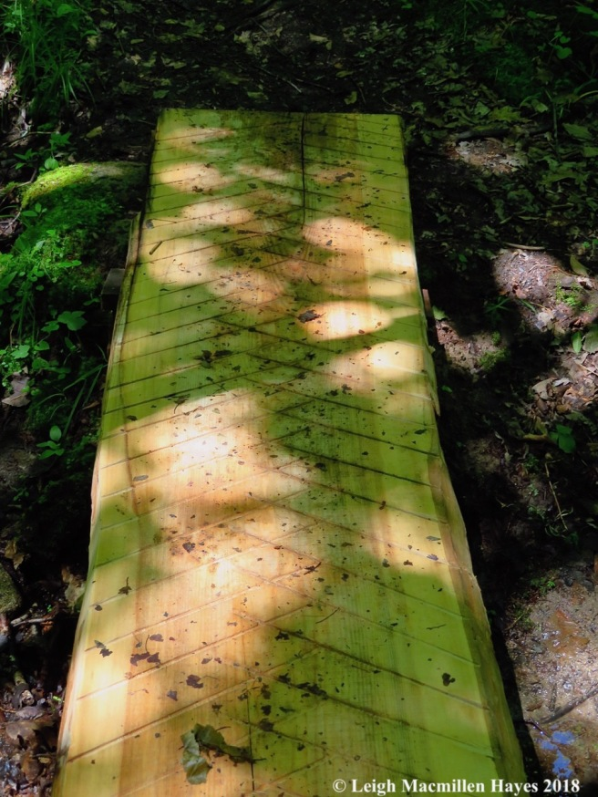 s27-plank