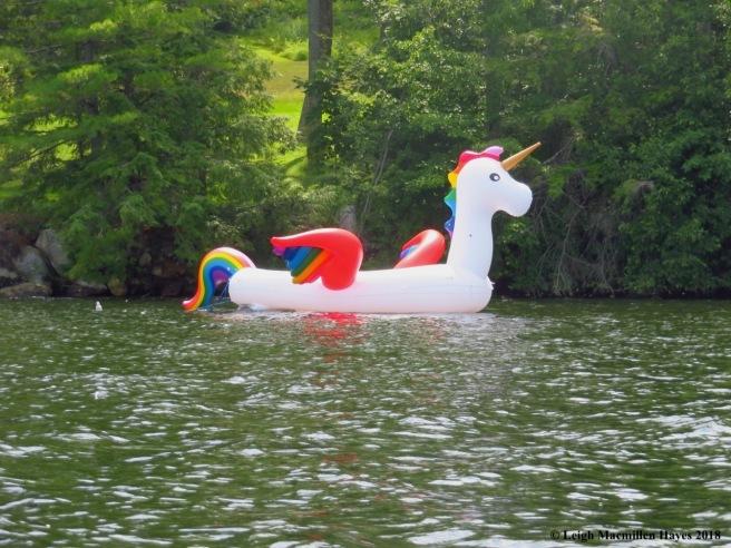 c18-unicorn