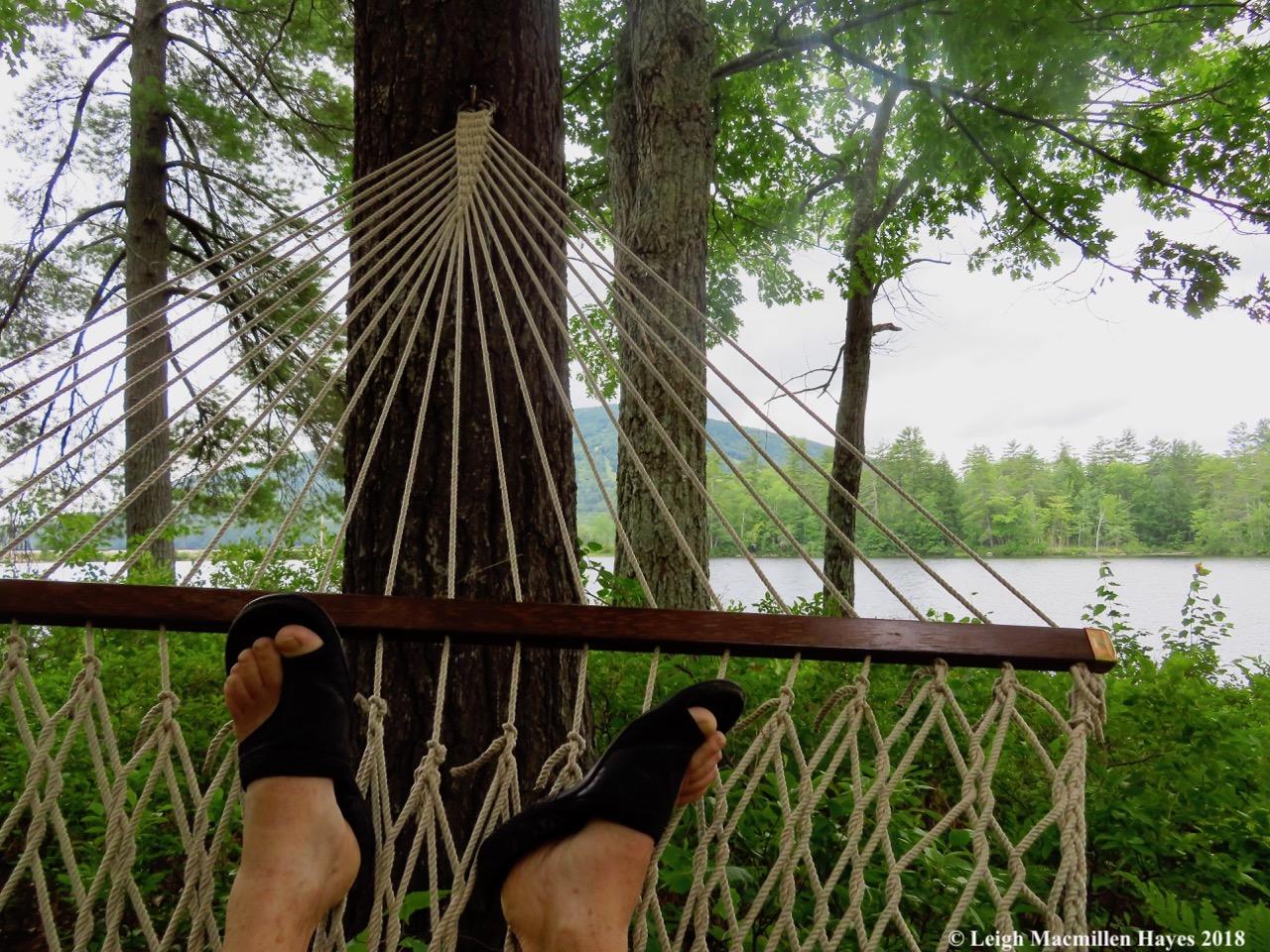 c21-hammock view