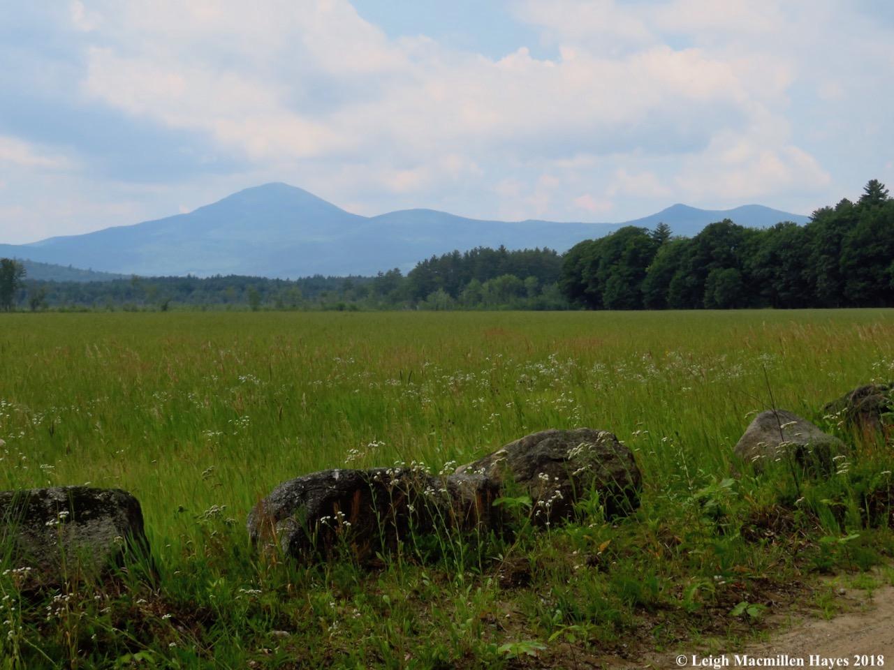 h11-Mt. Kearsarge