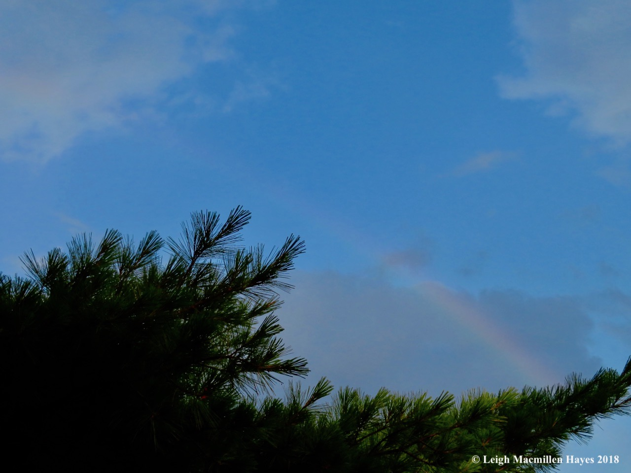 h31-rainbow