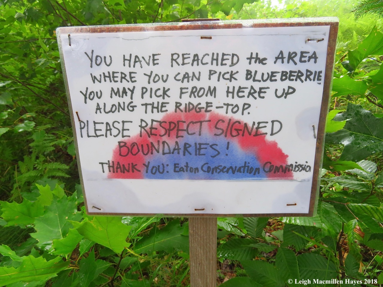 10-pick blueberries sign