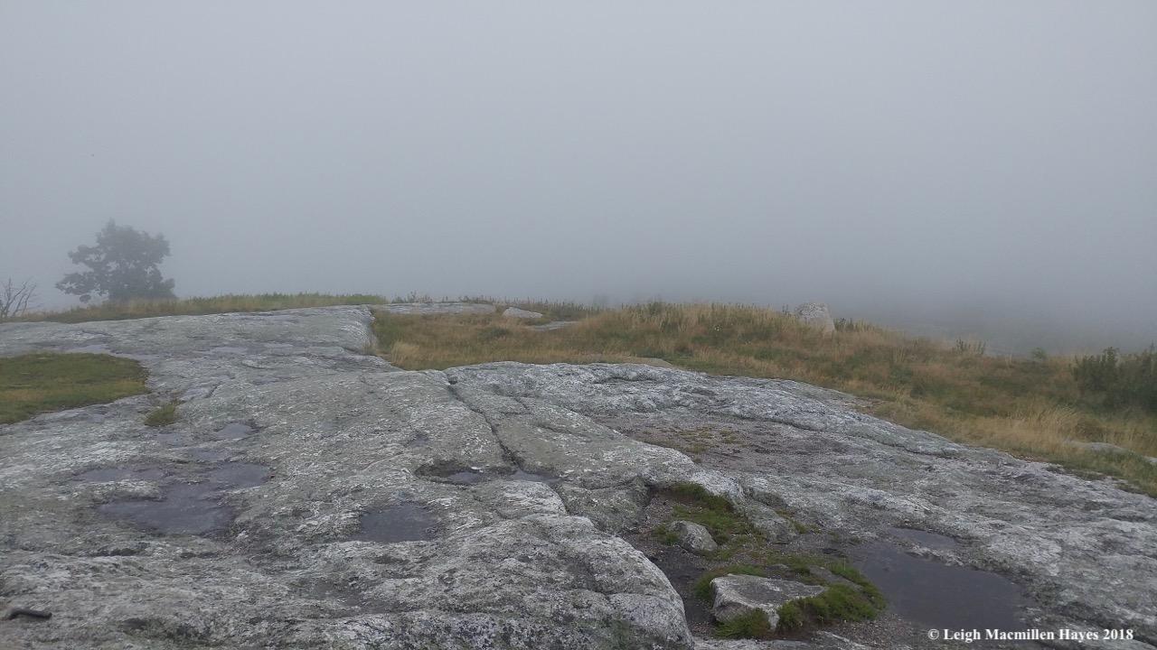 12-summit fog