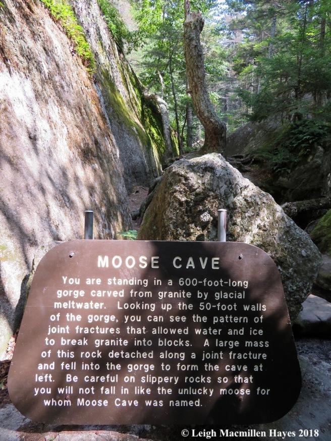 23-Moose Cave