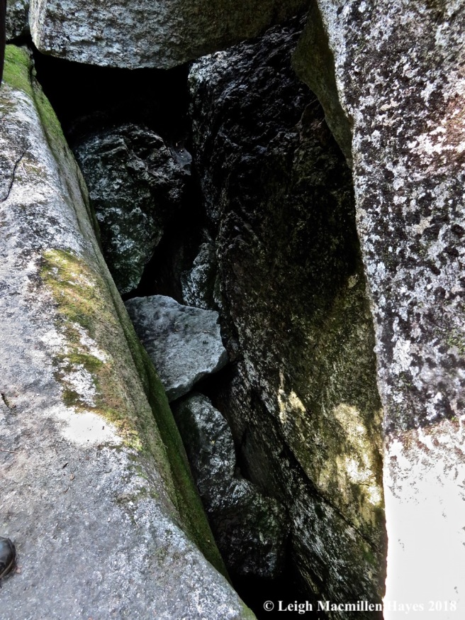 24-moose cave below