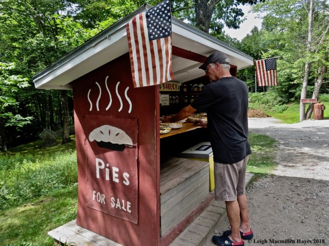 33-PIes for Sale