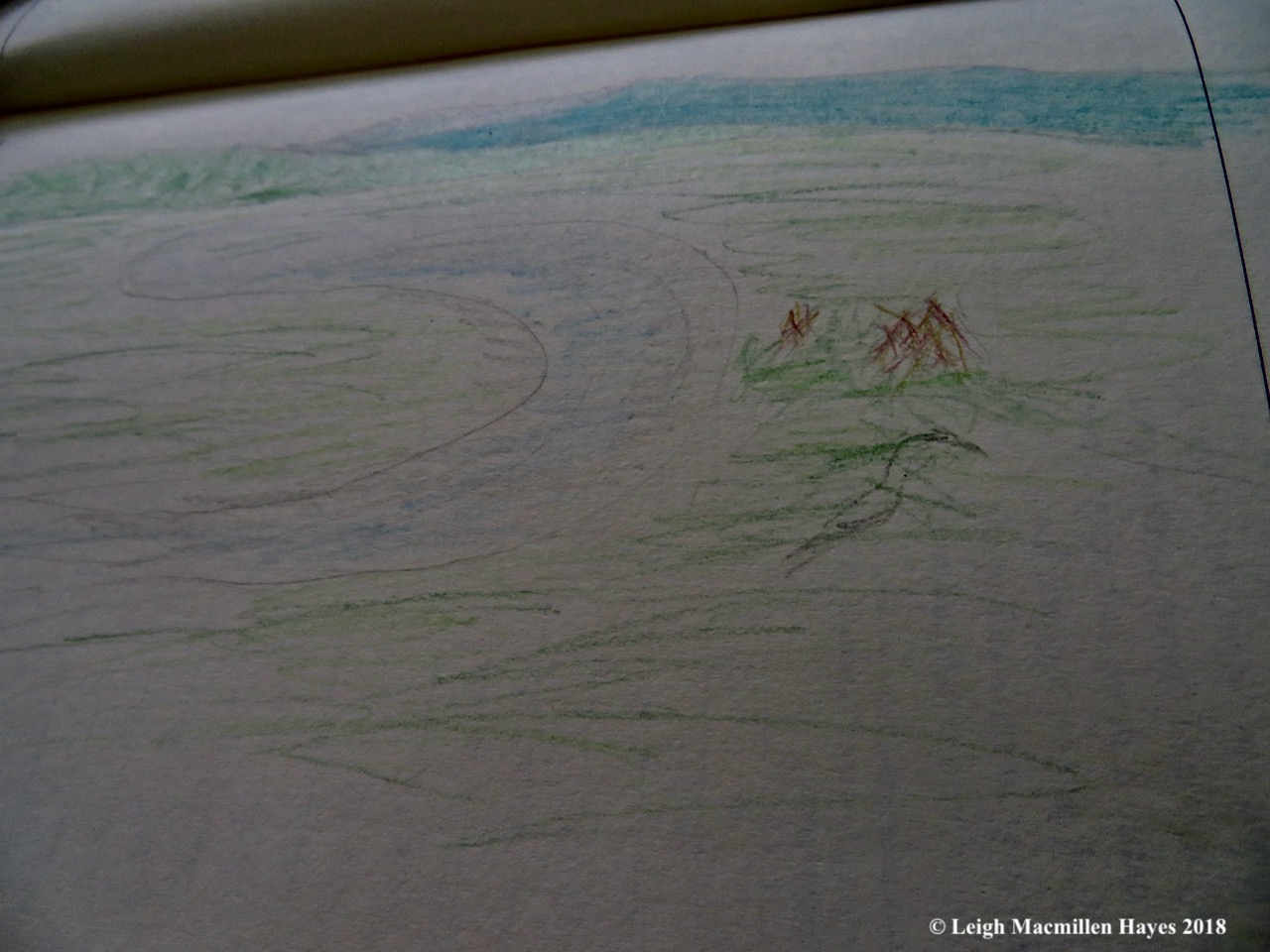 j24-Ann's landscape sketch with heron