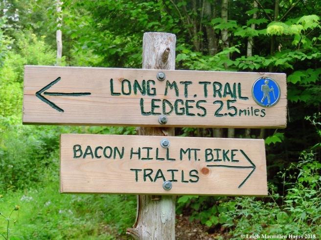 1-Long Mtn Trail