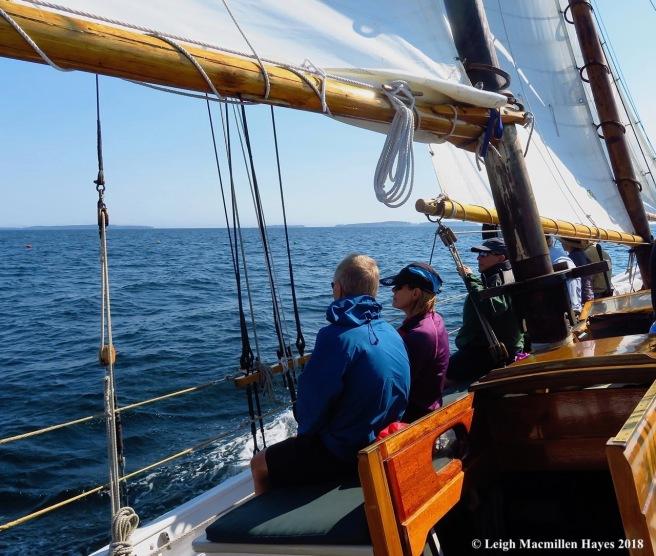 10-sailing Penobscot Bay