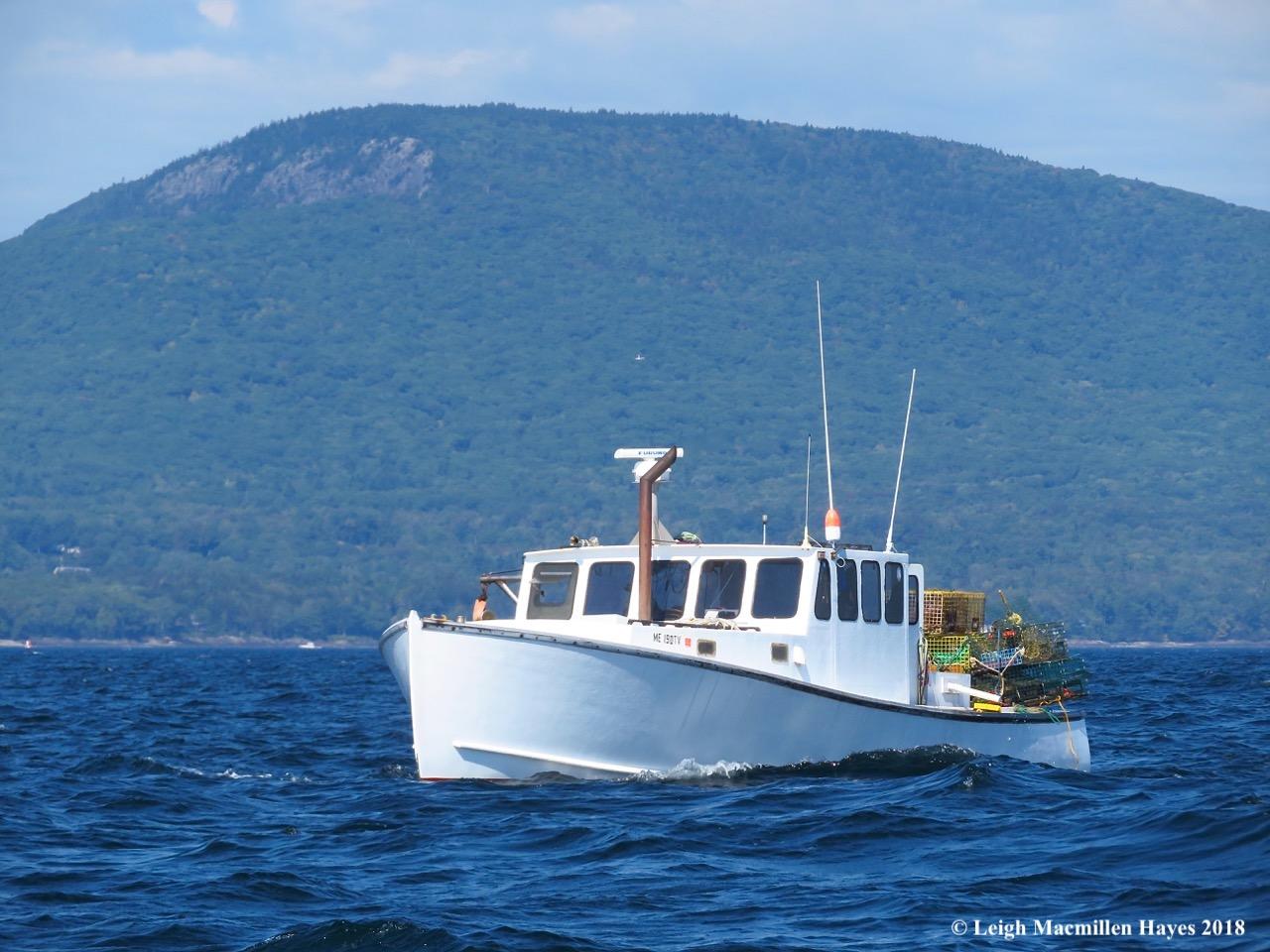 16-third lobster boat