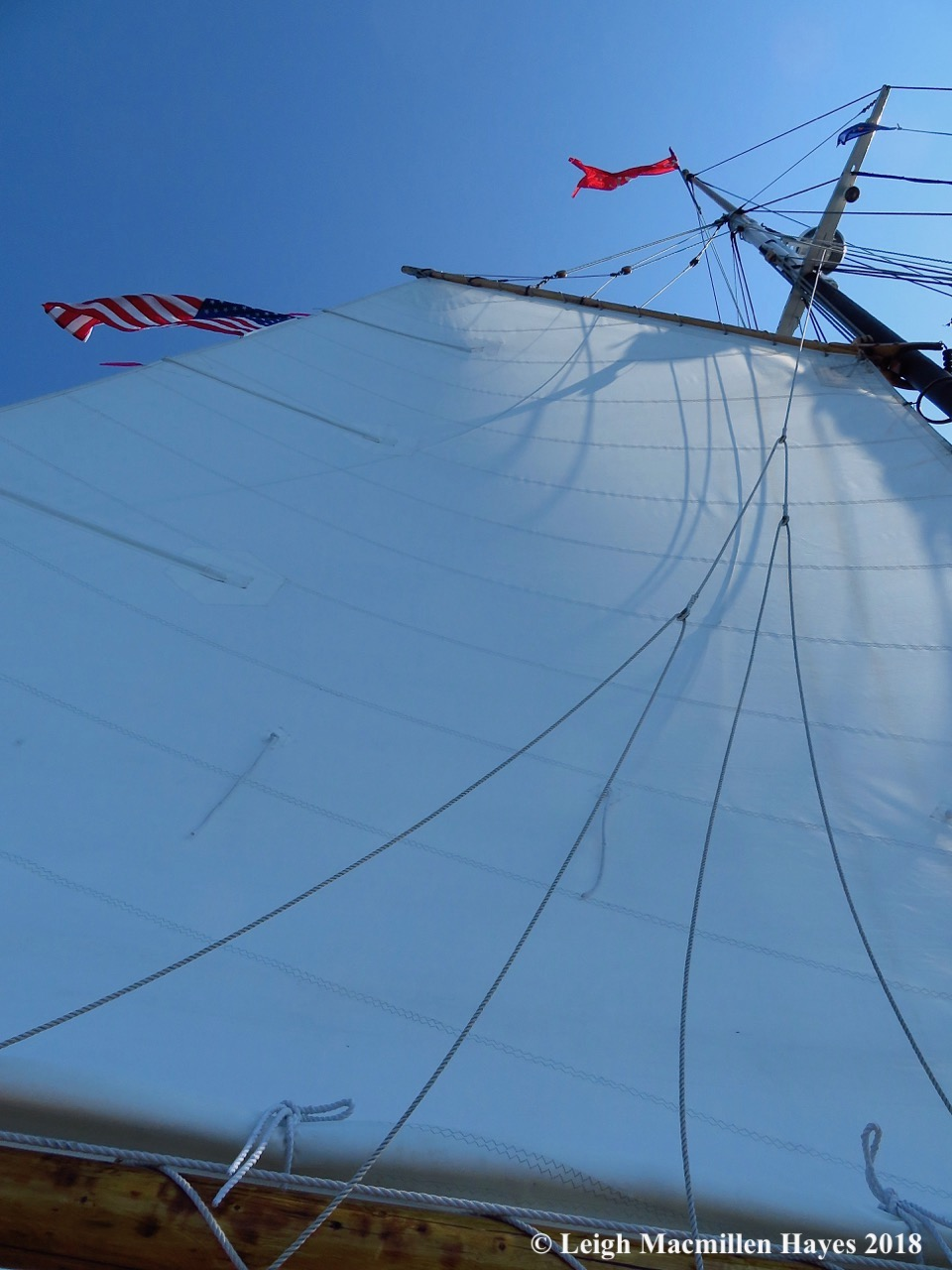 5-we raised the mainsail