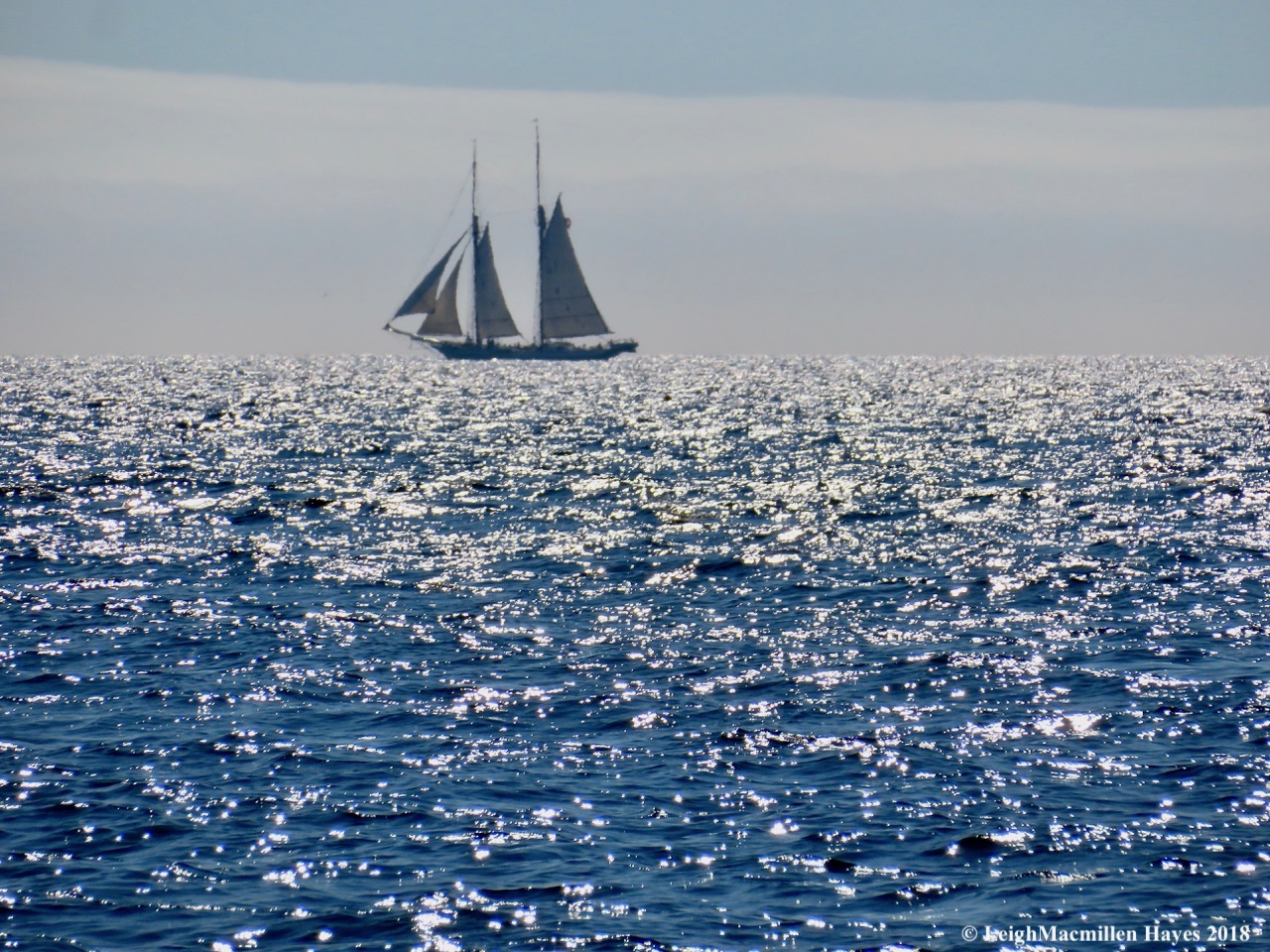 9-ghost ship on the horizon