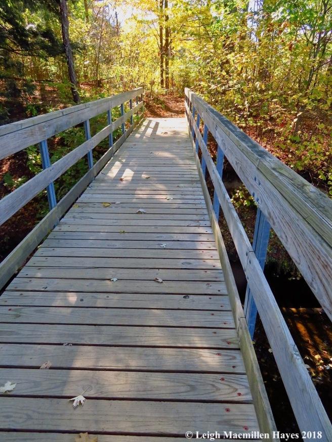 1-Conway Rec Path