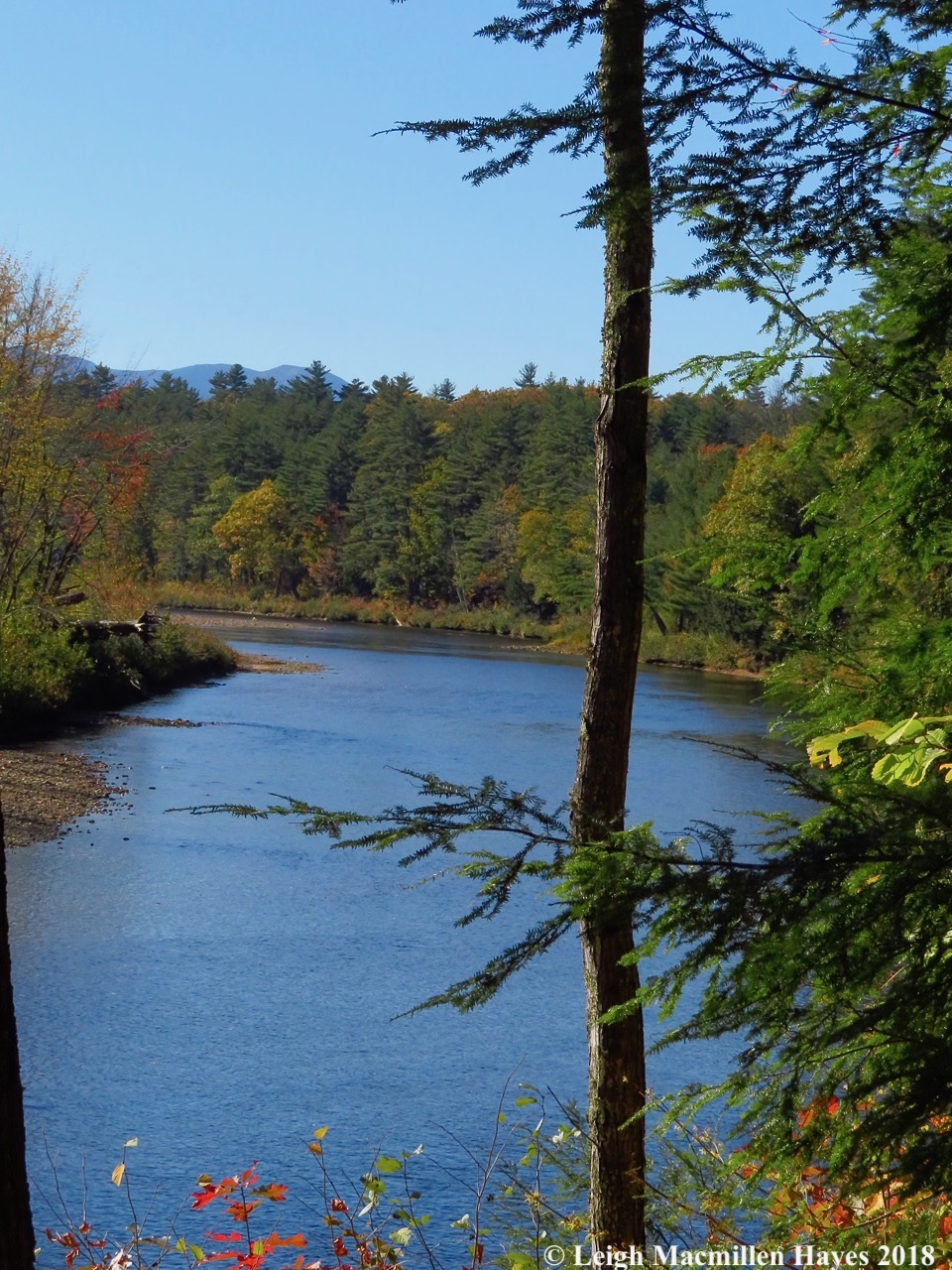 11-Saco River with Moat Mountains in background