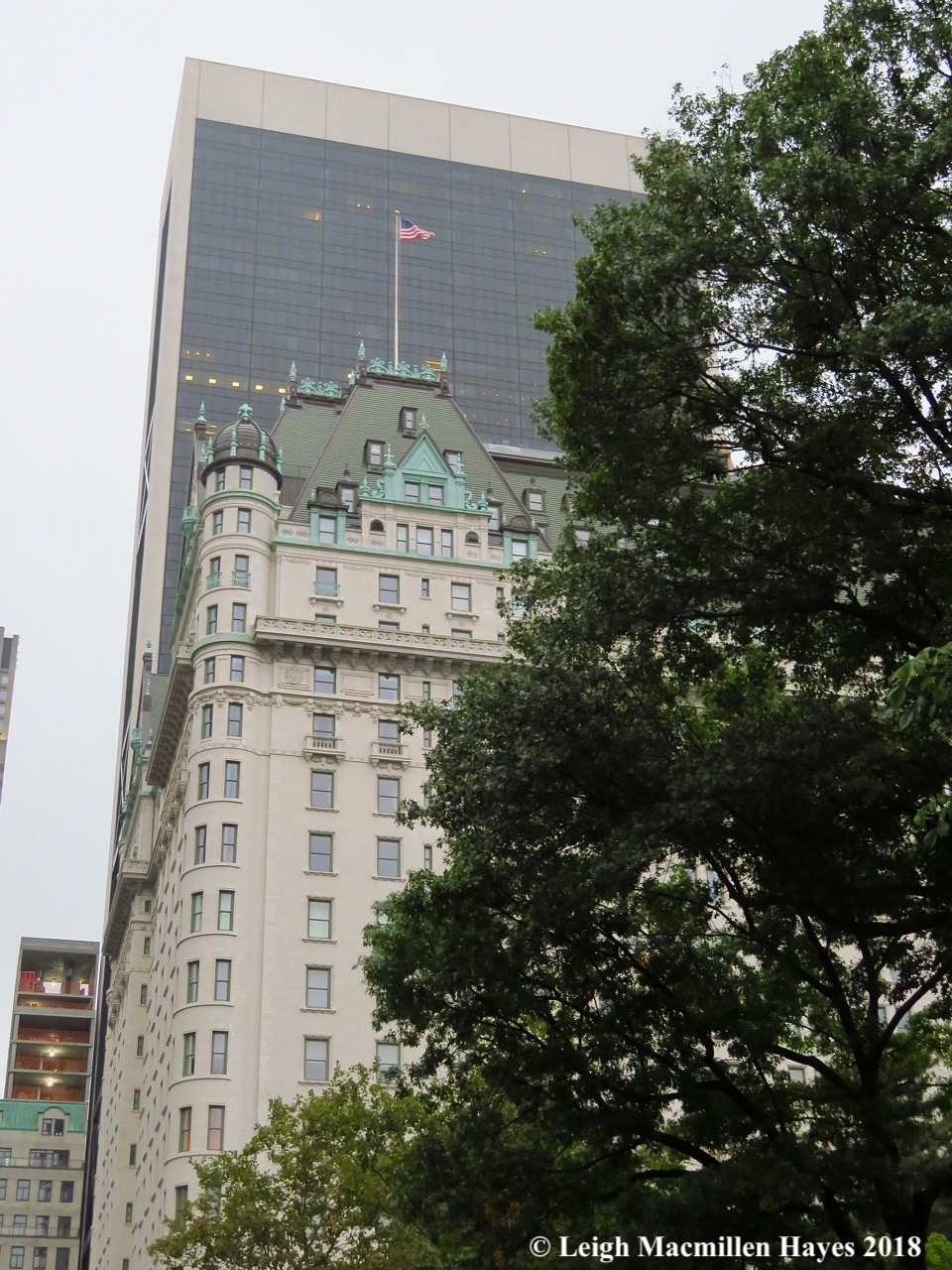 11-view from Central Park
