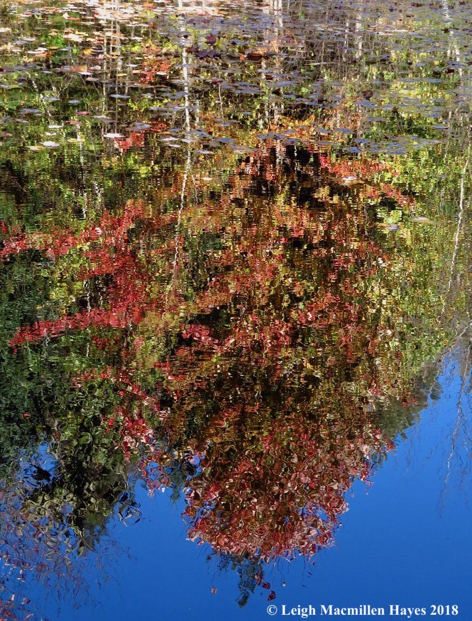 13-reflection
