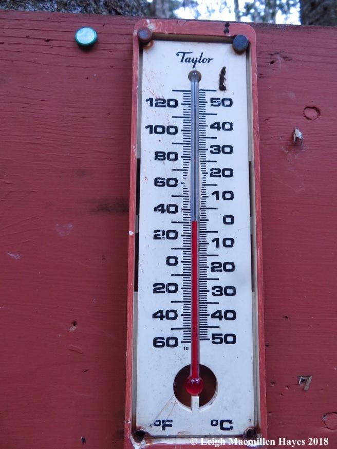 13-temperature