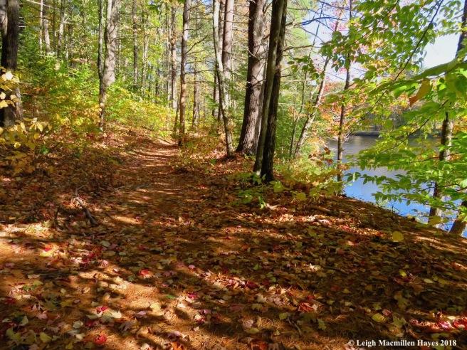 15-trail