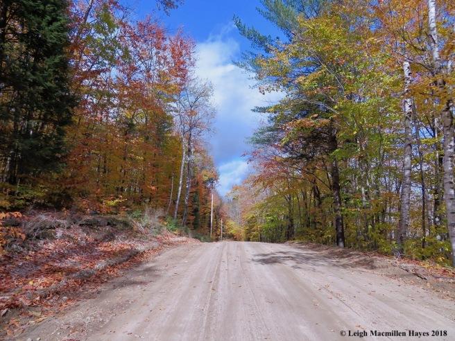 18-Horseshoe Pond Road