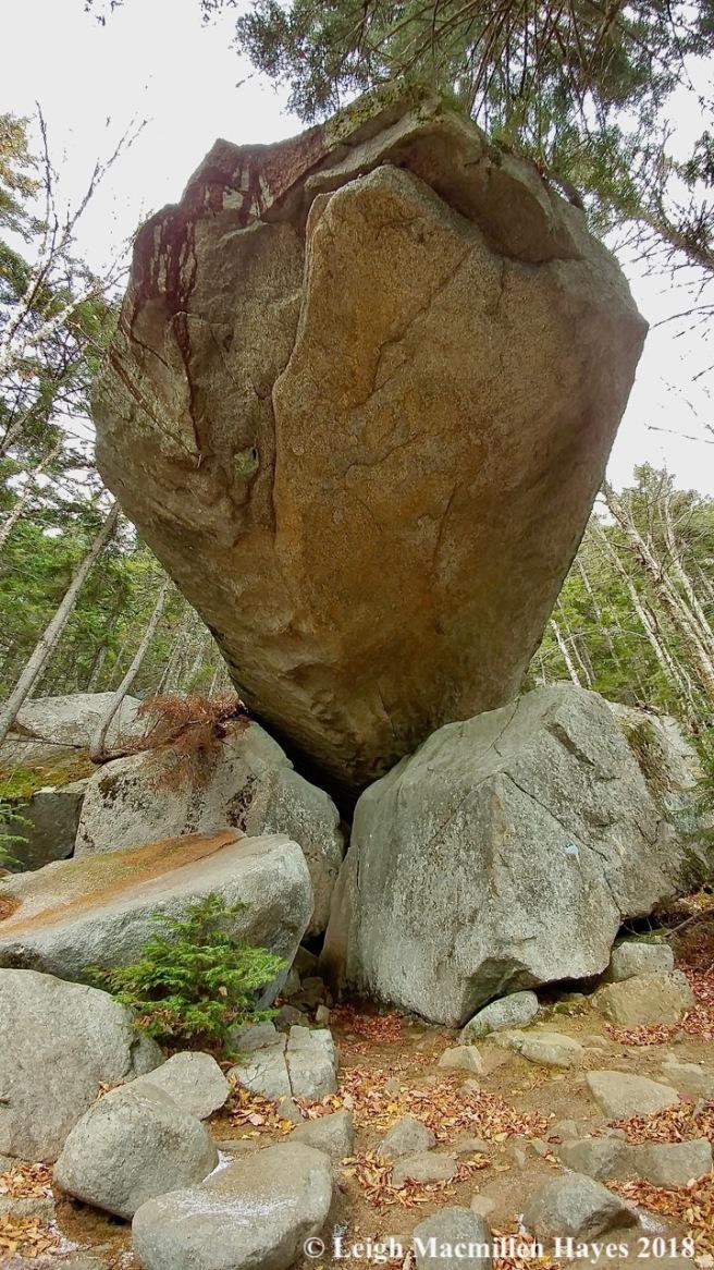 19-under piazza rock